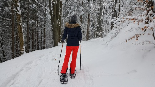 snowshoeing advice, winter sports in MI's Upper Peninsula, holistic wellness, holistic practices, holistic businesses physical fitness
